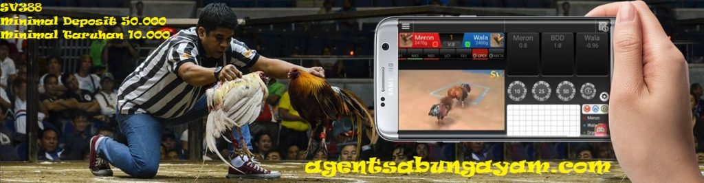 Sabung Ayam SV388 Live Streaming